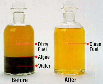 Decontamination - Clean Fuels, Inc.